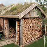 Как заготавливать и хранить дрова